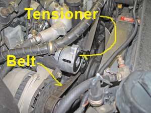 Drive belt tensioner bearing